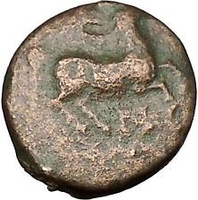 Philip II Alexander the Great Dad OLYMPIC GAMES Ancient Greek Coin Horse i51640 (iwaynedias) Tags: horse greek coin ancient dad great games ii olympic alexander philip uncategorized i51640 highratinglowprice