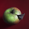 apple (maggie224 -) Tags: apple sq fruit mpt516 matchpointwinner