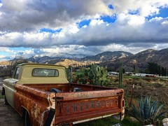 C10 in the dessert (El Cheech) Tags: plants succulent cactus smallwindow abandoned lowrider lowered hotrod mountains clouds sky classic vintage patina rust longbed gm generalmotors chevrolet truck pickup c10 chevy