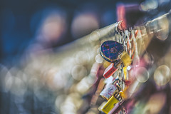 No Love Lost (HFF) (Stefan (ON/OFF)) Tags: locks lovelocks bokeh dof depthoffield shallowdepthoffield matte color colour colours colors fence hff happyfencefriday happyfencedfriday sonya7 sonya7m2 canonef7020028lisiiusm 7020028 pov blur tiefenunschärfe