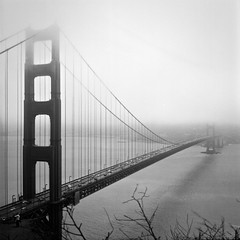 Golden Gate Bridge - Yashica Mat 124G (annelaurem) Tags: america analogphotography blackandwhite california filmcamera goldengate ilford sanfrancisco usa yashicamat124g