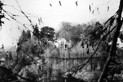 Haus in der Ferne (luislessing) Tags: black white lomo lomography schwarz weis apx agfa agfaphoto 100 iso haus berg mountain baum tree rahmen border