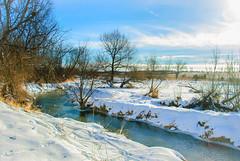 Wintry (Pedro1742) Tags: creek snow winter trees blue sky clouds water astoundingimage