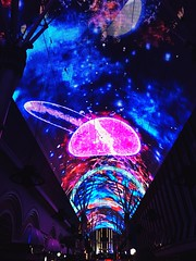 Top of Fremont Street #FremontStreet #LasVegas #Nevada #January17th #2017 #YoungWildANDFree #SoAwesome #BlessedBeyondWords #PhotographerHales #Feelin22 #YoungWildANDFree #YoungInAmerica #GoodVibesOnly (haleymarshall169) Tags: tfremontstree fremontstreet lasvegas nevada january17th 2017 youngwildandfree soawesome blessedbeyondwords photographerhales