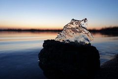 Driftwood with ice sheet II (christiane.grosskopf) Tags: lake lakeshore sunset driftwood ice icesheet water see wasser treibholz eisscholle seeufer sonnenuntergang sonyrx100m3 winter nature natur