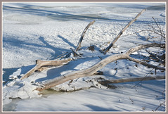 \\\ Winter River Driftwood - II. /// (Wolverine09J ~ 1 Million + Views) Tags: rivericeflows2017 winterdriftwood mississippiriver upper frozen landscape scenic shadows minnesota frameit~level01 faunafloralandscapes batslair level1autofocus naturestyle naturespoetry~level1 natureoftheworldunlimited thegalaxy beautifulcapture naturalbeauty fantasticnaturegroup naturescreations naturesgallery arealgem thebeautyofnature level1thewondersofnature