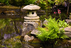 lichtje-Japanse-tuin (Don Pedro de Carrion de los Condes !) Tags: detail japanesegarden denhaag donpedro reflectie clingendael landgoed japansetuin landgoedclingendael d700 japanstuinlicht