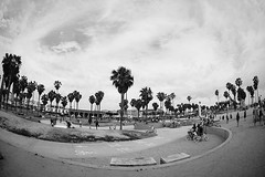 Venice Beach by Ginger Liu #Photography (GINGER LIU PHOTOGRAPHY) Tags: ocean california park santa street travel venice summer vacation sky urban usa white holiday seascape black art beach boys fashion basketball sport kids youth canon ball landscape photography us losangeles seaside los boards sand freestyle skateboarding angeles documentary angles free lifestyle adventure part monica skate skateboard northamerica southerncalifornia hoops santamonicabeach allstars styling