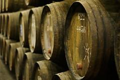 Porto (Yann OG) Tags: portugal 50mm wine bokeh barrel porto taylor cave vin f18 fût chais vilanovadegaia tonneau taylor's