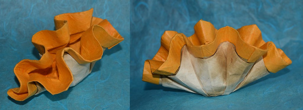 Orange Clam OrigamiPete Tags Giant Origami Peter Pete Petr Tridacna Stuchly