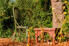 CHAIR AND TABLE IN FOREST (MARIDAKIS LEFTERIS) Tags: 7d 2015
