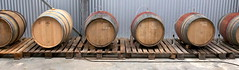 "Madame L Gamay Barrel Fermentation • <a style=""font-size:0.8em;"" href=""http://www.flickr.com/photos/133405556@N08/20078991205/"" target=""_blank"">View on Flickr</a>"
