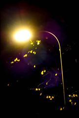 20161102-006 (sulamith.sallmann) Tags: berlin blur deutschland effect effekt filter folientechnik germany grüntalerstrase lamp lampe mitte nacht nachtaufnahme nachts night nightshot strasenlampe strasenlaterne unscharf wedding sulamithsallmann