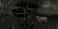Pondering in the Rain (Smitten Kitten in SL) Tags: secondlife rain umbrella sheep secondlife:region=beck secondlife:parcel=onecaress secondlife:x=117 secondlife:y=134 secondlife:z=22
