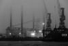 the mood of harbor / behind a thin veil (Özgür Gürgey) Tags: 2016 24120mm bw d750 darkcity hafen hamburg nikon architecture dock evening fog lowlight grainy