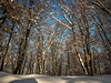 Winter time (VasiRed Bull 2013) Tags: light location landmark landscape lost nature natural nobody natura meditation world watchful wonderful winter exploring exploration elegant relief twilight travel time unreal forest fresh colors conection frozen horizont authentic