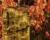 Heath Park and Runcorn Hill (5 of 8) (andyyoung37) Tags: batcarving runcorn runcornhill silhouette uk cheshire tree england unitedkingdom gb