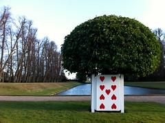 Photo of Erddig 9 of Hearts
