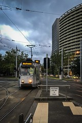 (paddington62) Tags: melbourne yarratrams streetcar trolley tram