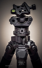 170128_DSC_7985 (JerryShots) Tags: acratech induro gearporn
