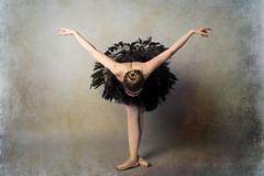 Bow (HOtography by Simon Ho) Tags: ballet ballerina blackswan odile tutu yorkphotographer dancer dance