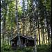 Finland Summer Landscape