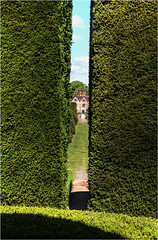 Through the Yew, Packwood House (alanhitchcock49) Tags: house june garden 7 national trust and yew through the packwood 2015