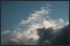 SW winds blow (Zelda Wynn) Tags: nature weather wind auckland equivalent cloudscape troposphere westauckland artgallerynsw inspiredbyalfredstieglitz zeldawynnphotography