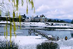 (Koji_Huang) Tags: snow japan kyoto newyear    uji