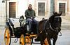 Séville (hans pohl) Tags: espagne andalousie séville horses cheveaux calèche streets rues