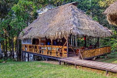 Eco Lodge Made From Bamboo, Amazonian Jungle (kalypsoworldphotography) Tags: cuyabeno yasuni jungle lodge rainforest green amazon cabana plant forest eco house environment tropical background wood travel roof tourism natural nature holiday amazonia bamboo landscape comfortable amazonian ecuador rooftop vacation peaceful traditional wild wilderness hut wooden southamerica tranquil shelter relax rustic reserve evergreen tribe adventure tribal isolated indigenous lagoon paradise
