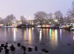Evening Hues (Karen_Chappell) Tags: park night bowringpark longexposure pond water reflection reflections stjohns newfoundland nfld lights trees ducks canada atlanticcanada avalonpeninsula purple pastel snow winter january