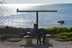 A Tale That Wasn't Right (Kotsikonas Elias) Tags: sea water wondering outdoor nikon d3300 athens greece