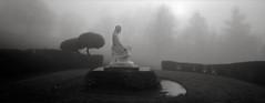 Jesus in the Fog, Portland (austin granger) Tags: jesus fog portland cemetery shrubs statuary religion death winter hedges christianity film xpan