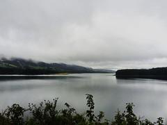 Represa del Neusa, Colombia. (sadday_ksg) Tags: nature naturaleza lago tree laguna árboles