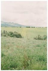 Path (Patrick J. Negwer) Tags: ecuador green verde naturaleza nature plants plantas sky cielo clouds nubes run down house abandoned kombi