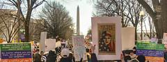 2017.02.04 No Muslim Ban 2, Washington, DC USA 00407
