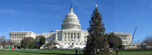 The 2004 Capitol Christmas Tree