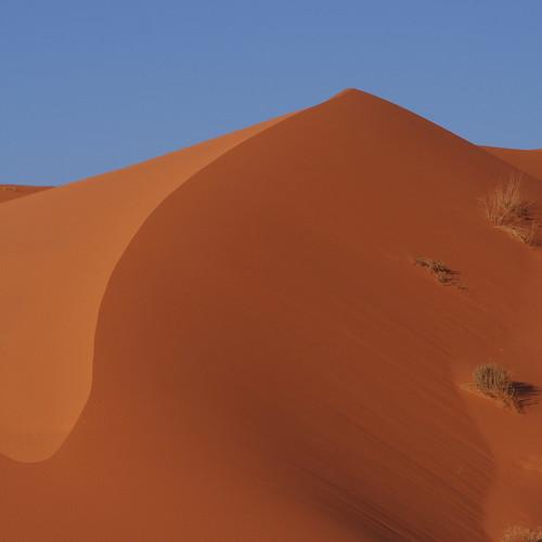Dunes and war in the desert (via OrangeSmell, Flickr)