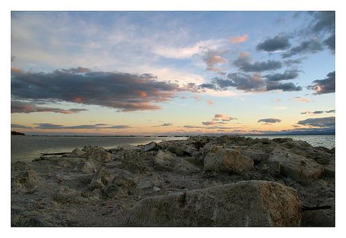Salton Sea Scape