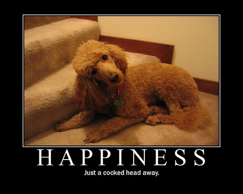 Happiness Motivational Poster, motivational posters, demotivational posters, funny motivational posters
