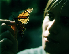 ...al santuari de les monarca (Ista) Tags: woman photoshop butterfly mexico mujer chica natura womenonly mariposa michoacan lili mexic noia dona ista papallona monarca blogoffame