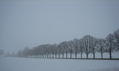 A misty morning (oliworx) Tags: morning trees mist snow beautiful topv111 misty 510fav germany bavaria interesting fantastic topv555 topv333 great topv444 2006 topv222 topv50 topv100 topv200 topv500 topv600 topv300 sauerlach topv400 cotcmostfavorited 200603 oliworx