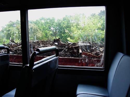bus sightings