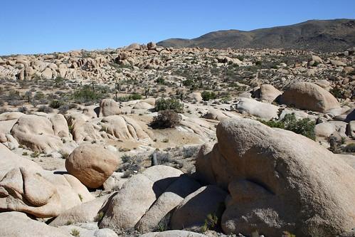 White Sandstone Landscape