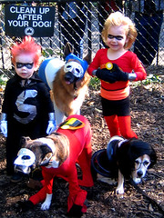 incredible dogs (istolethetv) Tags: dog dogs halloween photo costume foto image snapshot picture halloweencostume photograph  incredibles  tompkinssquarepark dogsincostumes dogcostume halloweendogparade tompkinssquareparkdogparade dogsinhalloweencostumes dogsdressedupaspeople canetravestito caneincostume halloweencostumesfordogs