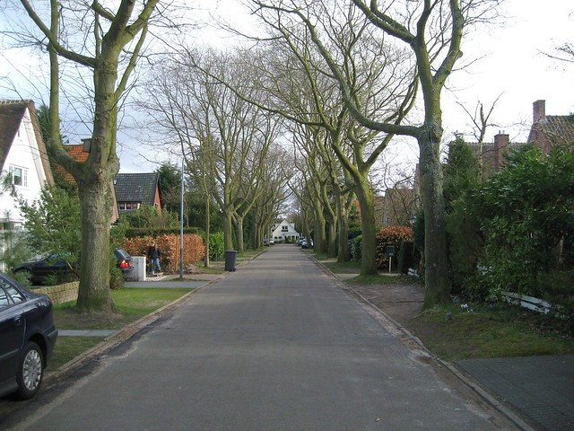 Early spring in our street