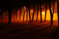 Foggy Night #2 (BamaWester) Tags: trees topv111 fog tag3 taggedout lights interestingness bravo tag2 tag1 shadows inho nightshot quality 100v10f eerie 100views top20night topf200 pick10 royalflush straightflush 1606 3000views supershot tag999v9f tag1111v11f onetopfav 3000v175f good3 good4 good5 good6 good1 kkfav bratanesque megatopofthefog