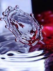 ufo (Uggla) Tags: color macro water wow fz20 drop panasonic droplet splash abstarct kitchensink panasonicfz20 wooooow superwow torkeluggla