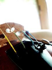 Violin in the Sun (frozenchipmunk) Tags: violin sun closeup musical music strings tuning bridge stringed instrument